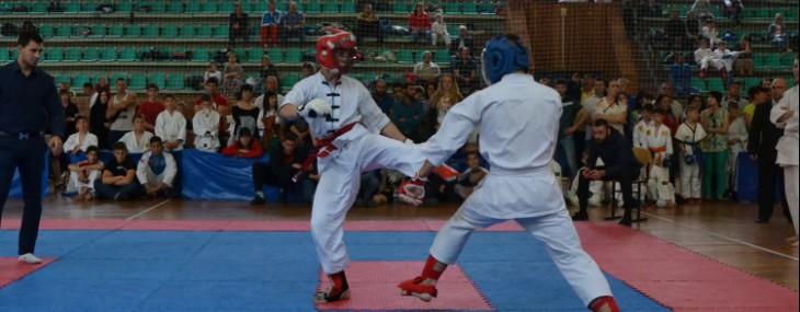 Открытый Чемпионат и Первенство Республики Адыгея по всестилевому каратэ «Великая Победа»