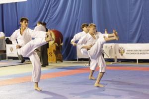 Чемпионат и Первенство России по всестилевому каратэ