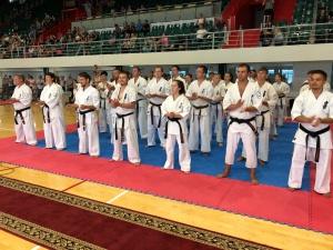 В Казани прошел Всероссийский турнир по всестилевому каратэ