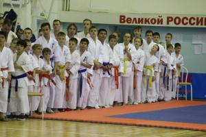 Открытый Кубок Новосибирской области по Всестилевому каратэ