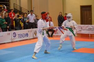 Фестиваль в рамках Кубка России по всестилевому каратэ
