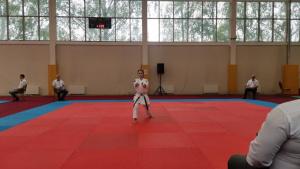 В Покровском завершился чемпионат России по всестилевому каратэ
