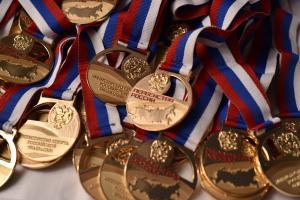 В Орле завершилось Первенство и Открытый Всероссийский Фестиваль по всестилевому каратэ